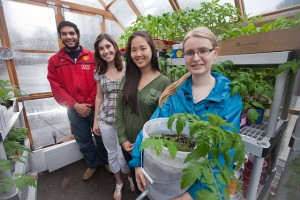 Asad Akram 13 (l-r), Alexandra Behette '13, Helen Xu '14, and Julia Seidenstein '14 in Easton Area Community Center's greenhouse