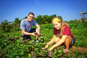 Peter Todaro '16 and Julia Kripas '15 harvest and clean vegetables at LaFarm.