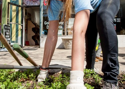 Katria Tomko '16 helps clean up landscaping along Centre Square in Easton.