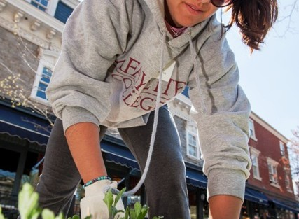 Victoria Vergona '15 gets down in the weeds to help keep Centre Square clean.