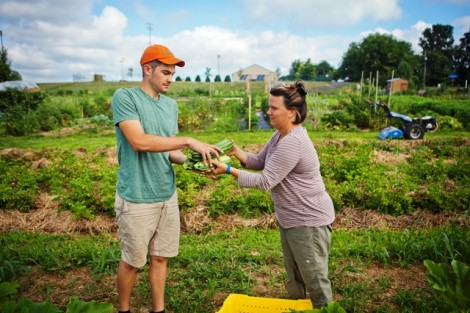 Eric Giovannetti '15 helps Sarah Edmonds, director of LaFarm, in the squash patch.