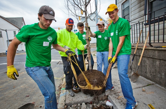 Students plant trees along the 1300 block of Lehigh Street.