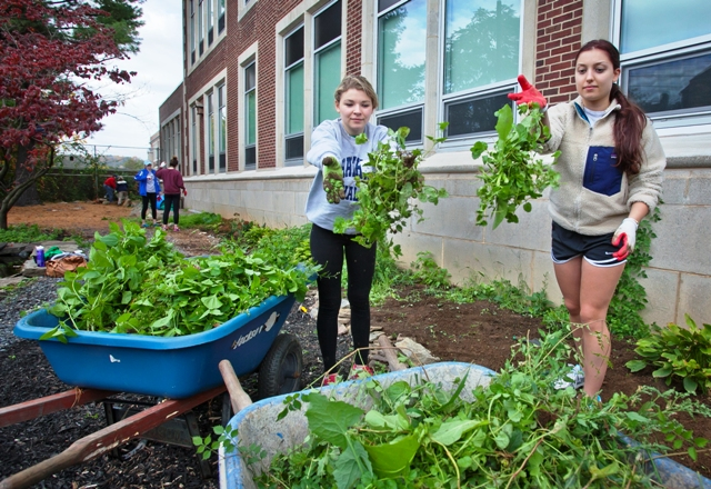 Students clear weeds at Paxinosa Elementary School.