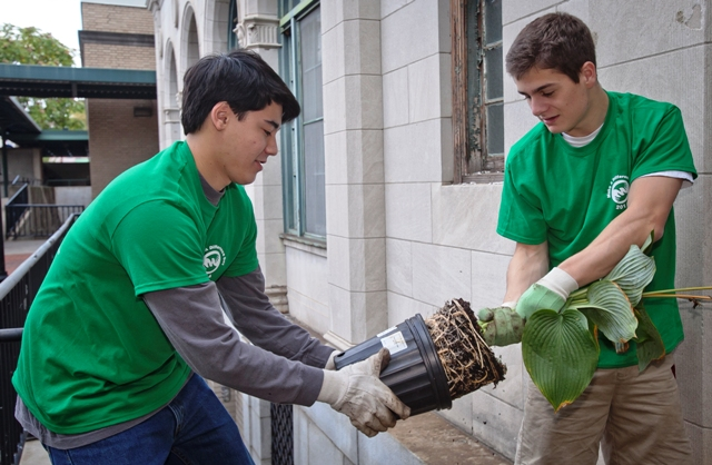 Corbin Jacobs '17 and Jaysen Bohrod '17 pull a plant out of its pot and plant it along S. Sitreaves Street.