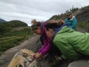 Jaclyn White '13 inspects a piece of petrified wood.