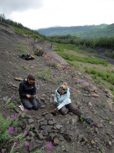 Alexandria Brannick '12, left, sorts fossil leaves from Alaska's Chickaloon Formation.