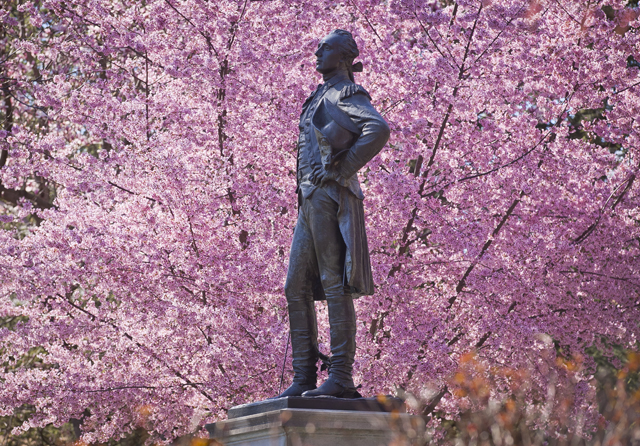 The statue of the Marquis de Lafayette is surrounded in beautiful spring color.