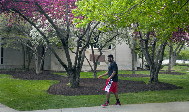 A student walks past Colton Chapel.