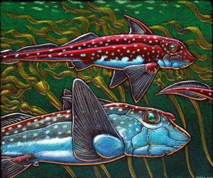 """Ratfish - Hydrolagus collei,"" by Ray Troll"