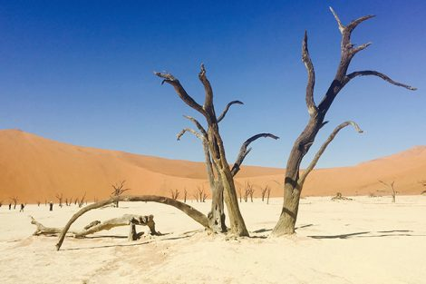 Taken in Sossuvlei, Namibia. Submitted by Melissa Last '17