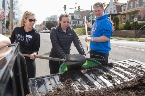 Students participating in community service projects planting and painting