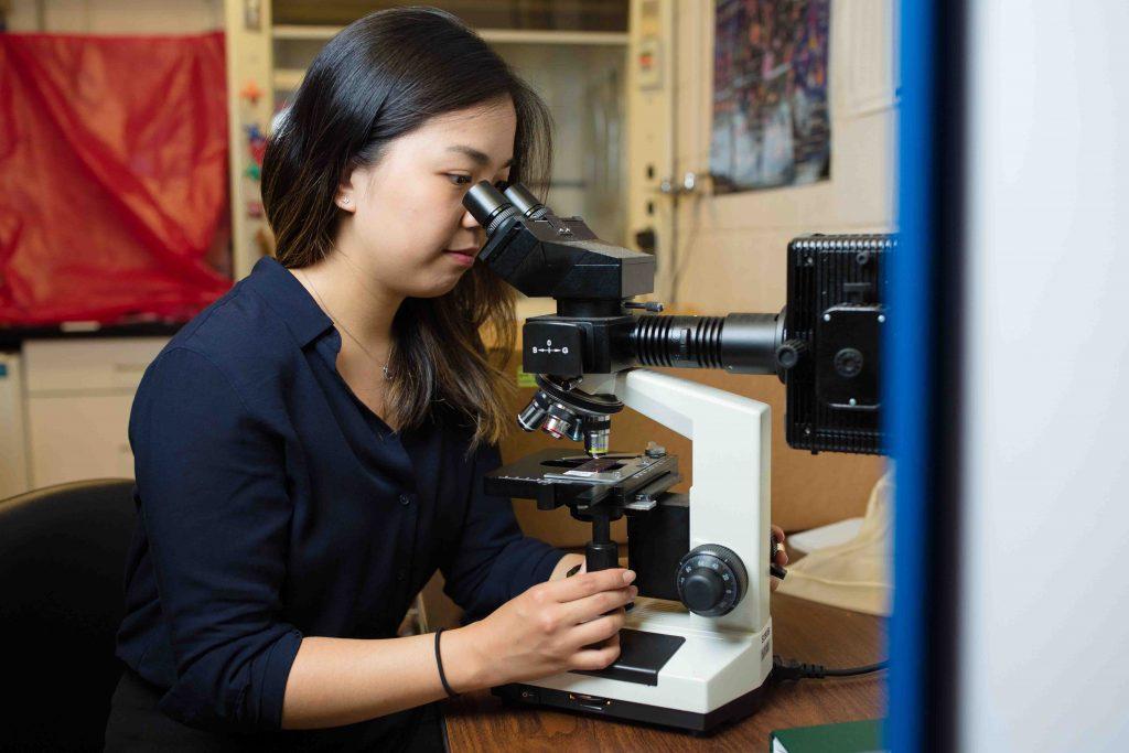 Chenyu Zhang looks through a microscope.