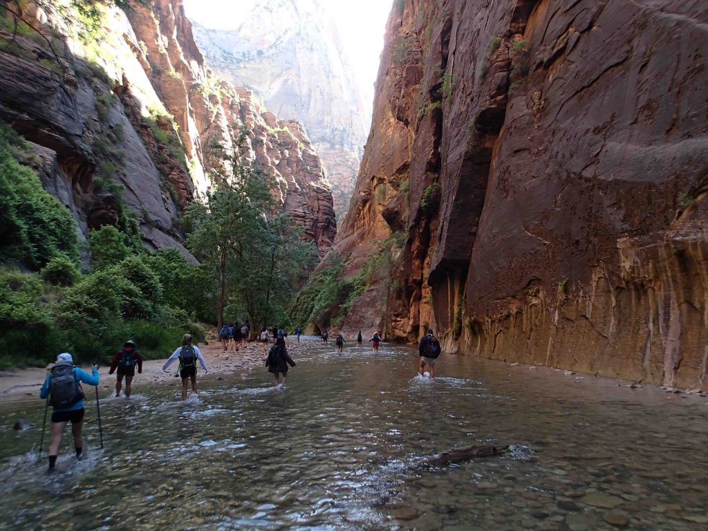 Students hike through the Narrows in the foot-numbing Virgin River in Zion National Park.