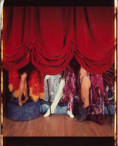 Artist William Wegman's photo 'Opening Act'