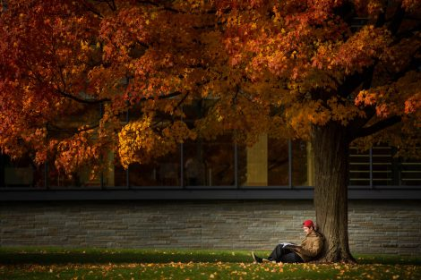 A student readers under a tree by Skillman Library.