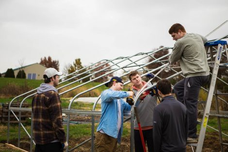 Members of Phi Psi fraternity help with the building of a hoop house, a 22-by-21-foot structure that will help LaFarm extend its growing season earlier in spring and later in fall.
