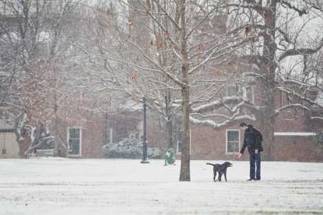 a student plays fetch with his dog on the quad in the snow