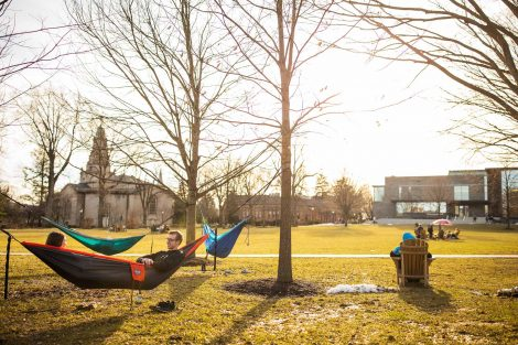 a forest of hammocks hangs on the quad