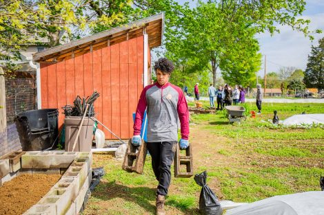 Students gardening at Easton Urban Farm for Lafapalooza
