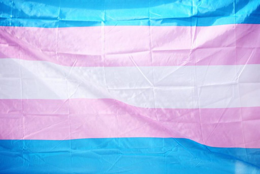 Image of the Transgender flag