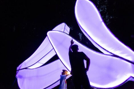 The sculptor points at the bugs landing on his giant illuminated wings