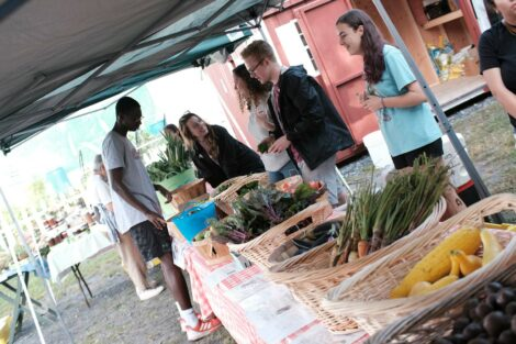 Students stand by produce at the Farm Stand run by the Vegetables in the Community program.