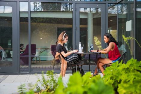 students study in the rockwell courtyard