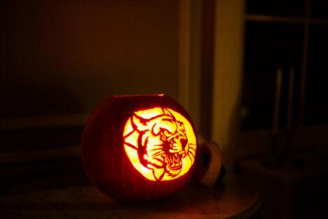 leopard o'lantern