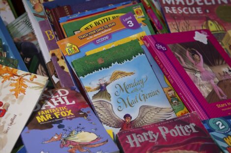 Some of the books available for the children to take