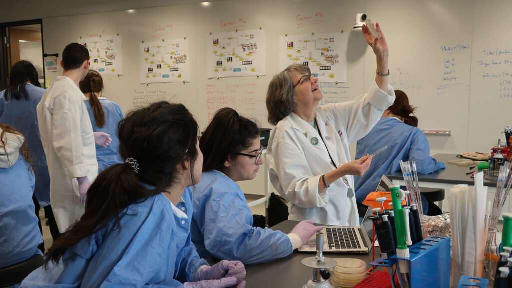 Professor Laurie Caslake conducting research with students in the SEA-PHAGES biology lab