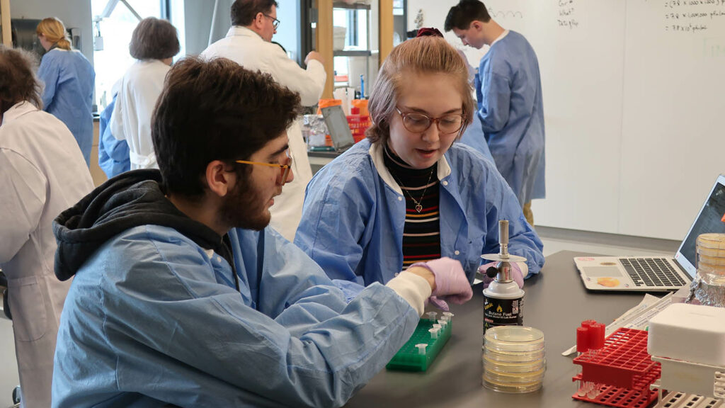 Students complete a lab in the SEA-PHAGES biology lab