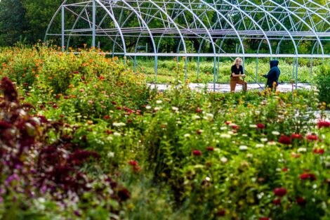 Lisa Miskelly and a student behind a field of flowers.