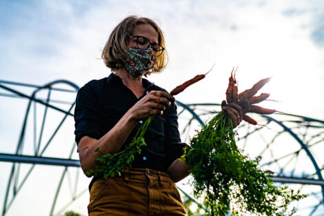 Lisa Miskelly, in a mask, gathers a bunch of carrots.