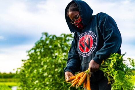 A student, in a mask, gathers a bunch of carrots.