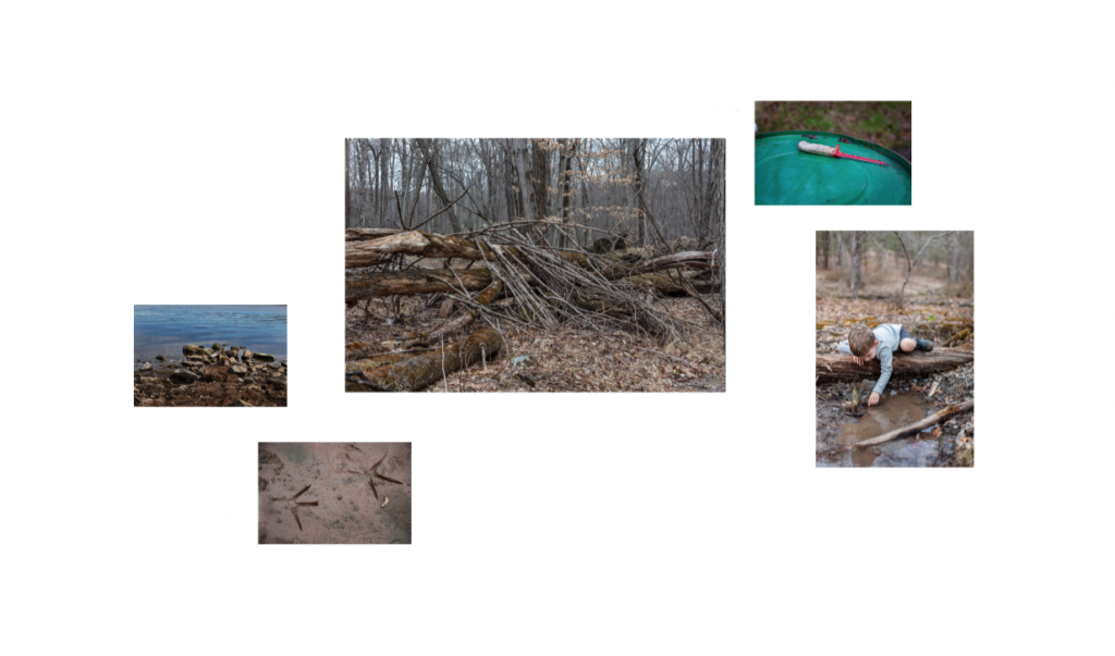 a grouping of photos that include bird tracks, a bloody knife, and a boy playing in a puddle