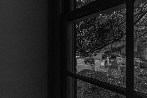 Black and white image of a tree through a window of Pardee Hall.