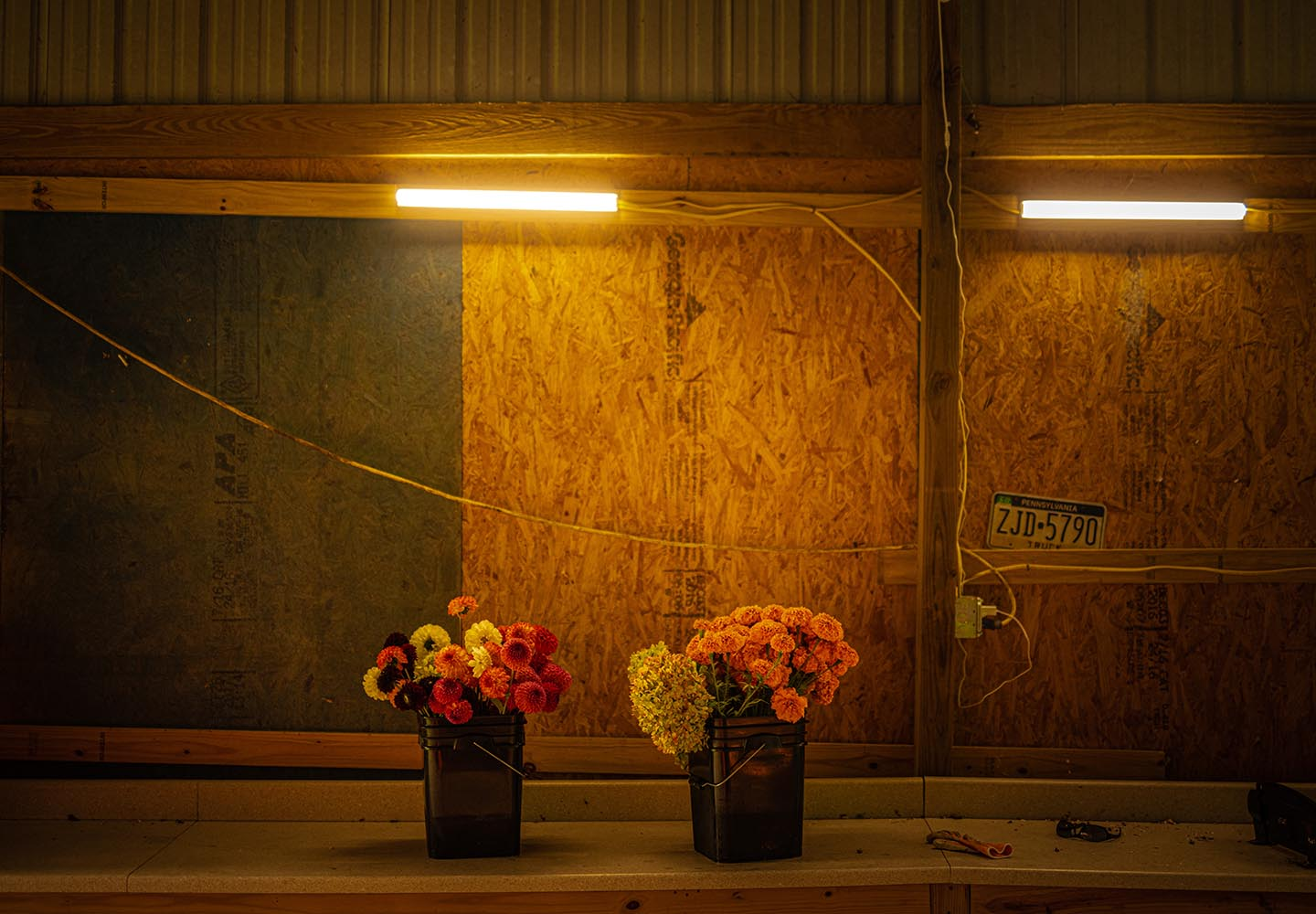 Jenn McAtee's workbench with buckets of flowers