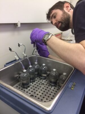 Michael Adelman is working with bottles of water at a sink