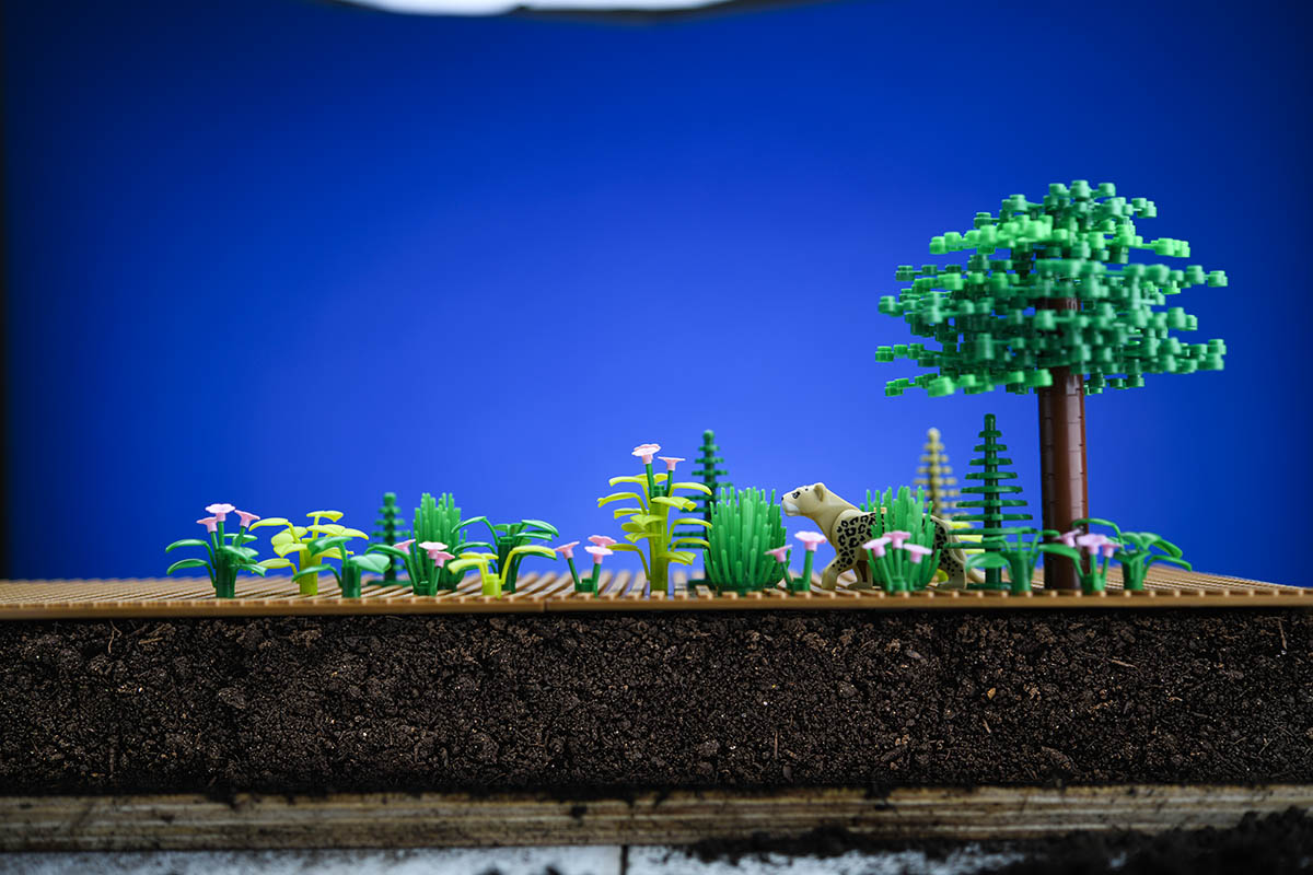 Legos depict trees in front of a blue background