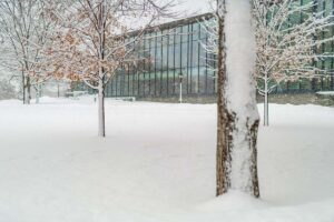 Skillman Library surrounded by a blanket of snow