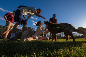 Four masked students pet a dog in the grassy Quad.