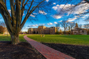 A brick path next to a bare tree, surrounded by bright blue sky with white, fluffy clouds. Pardee Hall is in the distance.