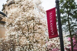 A tree with white flowers in front of a pole with a maroon flag that reads Lafayette