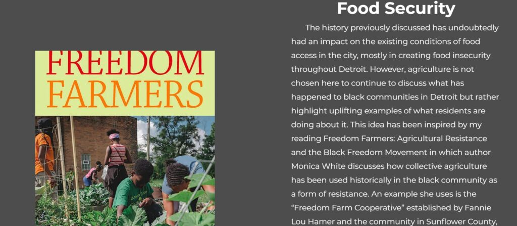 Freedom Fighters book cover alongside text from research