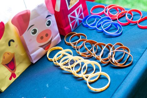 Rows of bracelets in front of chicken, pig, and farmhouse giftbags.