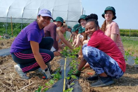 Students line up at garden bed