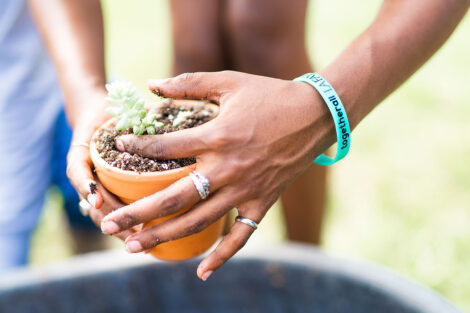 hands of a student pat dirt into a pot with a plant in the center