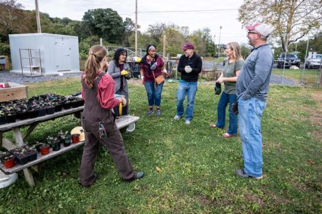 Staff volunteers talk in a group at Community Gardens.