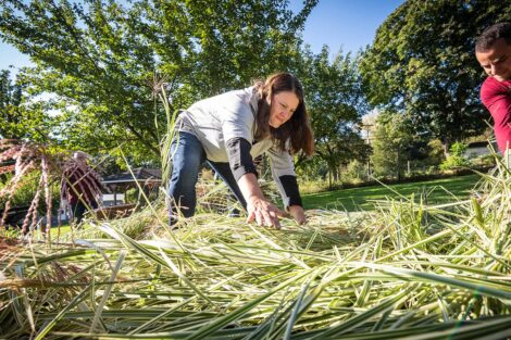 A staff volunteer pulls weeds.