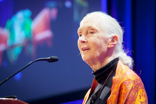 Jane Goodall's Visit in Pictures · News · Lafayette College